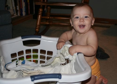 Blaise in the Laundry