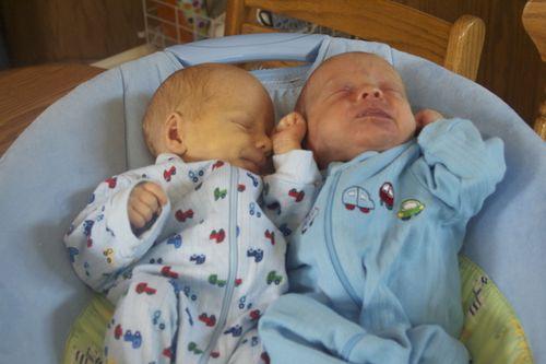 Little Babies Bouncy Seat