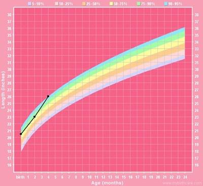Height_chart_4_months